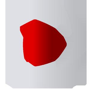 Paolo Dal Pont – produzioni video